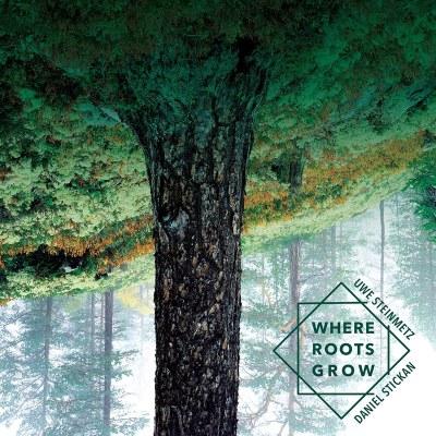 Uwe Steinmetz / Daniel Stickan - Where Roots Grow